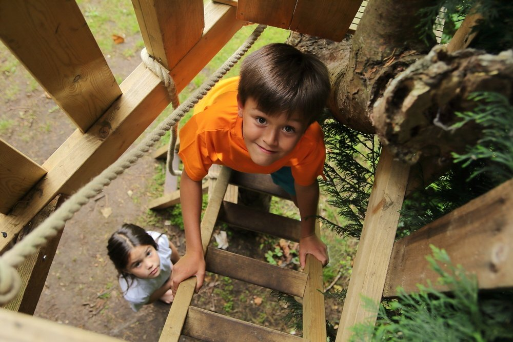 A child climbing into a treehouse